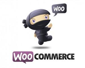 WooCommerce e WordPress