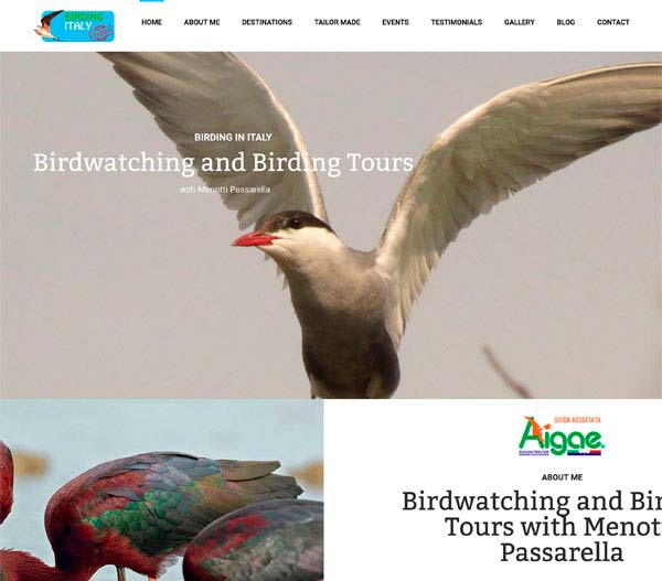 Birding Italy